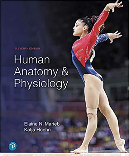 Human Anatomy & Physiology 2 Vol 2019 - آناتومی