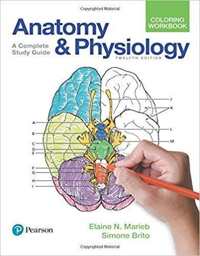 Anatomy and Physiology Coloring Workbook  A Complete Study Guide 2018