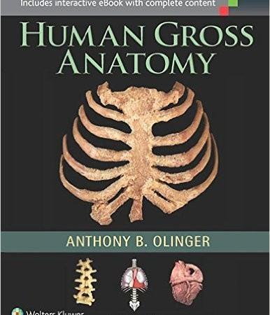 Human Gross Anatomy  2015 - آناتومی